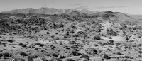 thumb_richtersveld_vista.1024